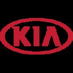 Dealer Teamwork - Kia Marketing Partner