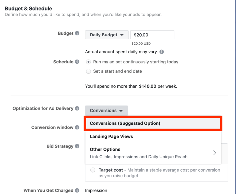 "Dealer Teamwork- Image demonstrating how to choose ""conversions"" as an ad delivery option on Facebook Ad Manager."