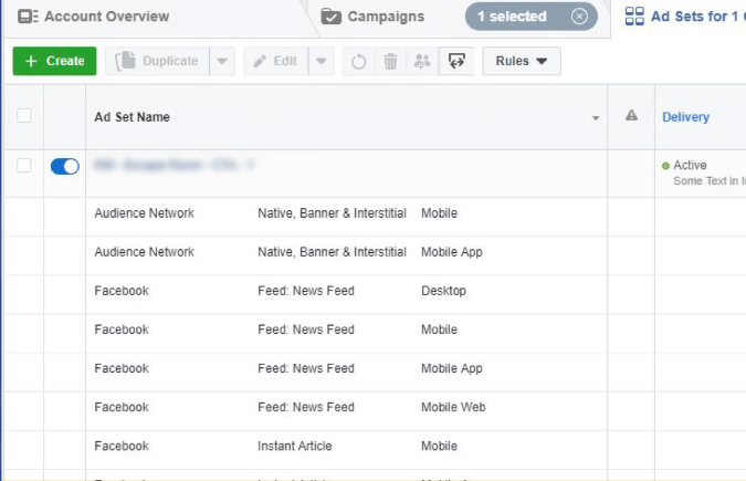 Dealer Teamwork- See ad placements under your ad set names in Facebook Ad Manager.